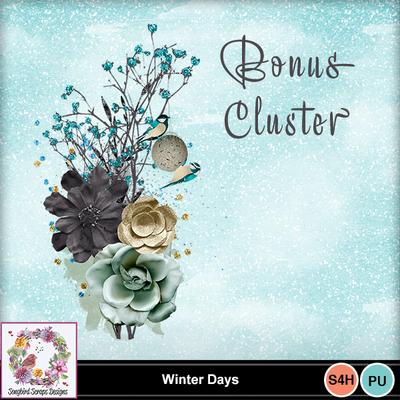 Winter_days_bonus_cluster