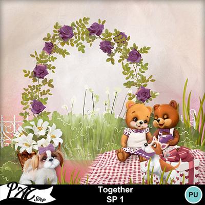 Patsscrap_together_pv_sp1