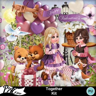 Patsscrap_together_pv_kit