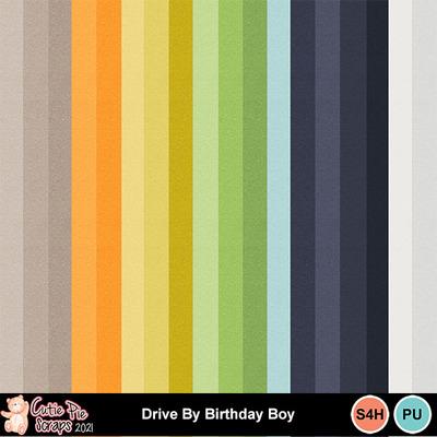 Drive_by_birthday_boy7