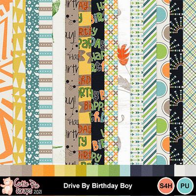 Drive_by_birthday_boy8