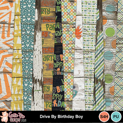 Drive_by_birthday_boy9