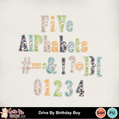 Drive_by_birthday_boy10