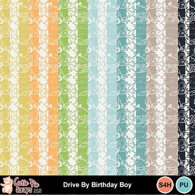 Drive_by_birthday_boy13