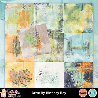 Drive_by_birthday_boy11