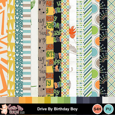 Drive_by_birthday_boy8