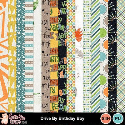 Drive_by_birthday_boy6