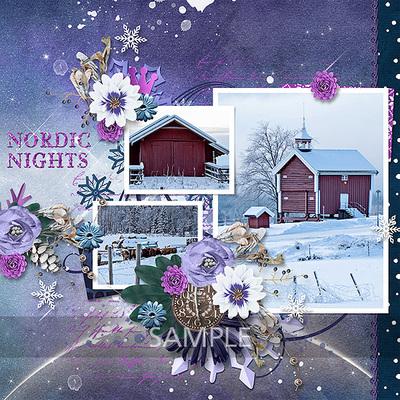 Nordic_nights_album02-toiny