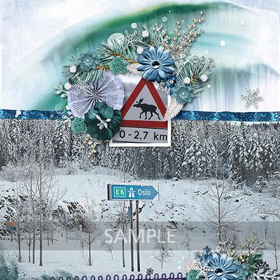 Nordic_nights_album04-toiny