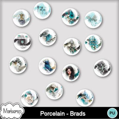 Msp_porcelain_pv_bradsmms