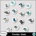 Msp_porcelain_pv_bradsmms_small