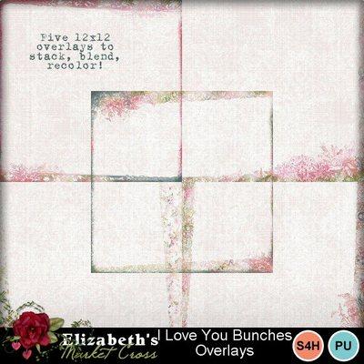 Iloveyoubunchesoverlays-001