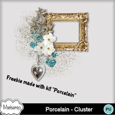 Msp_porcelain_pv_clustermms