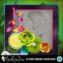 20_pg_vibrantcolors_book-001_small