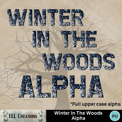 Winter_in_the_woods_alpha-01