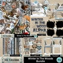 Winter_in_the_woods_bundle-01_small