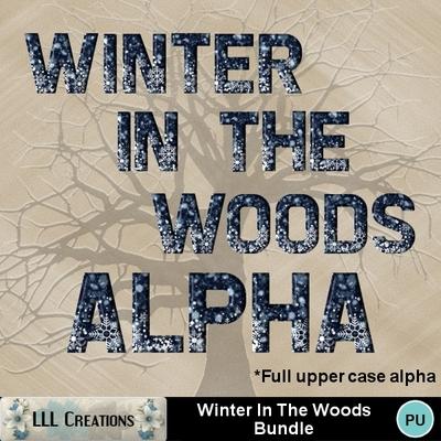 Winter_in_the_woods_bundle-08