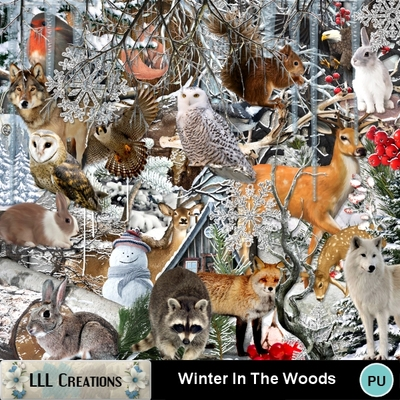 Winter_in_the_woods-01
