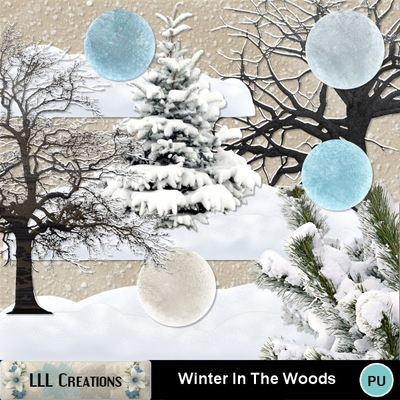 Winter_in_the_woods-03