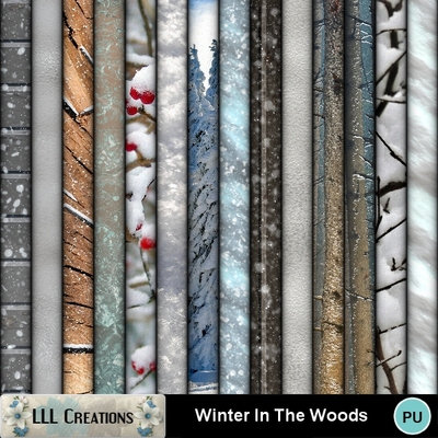 Winter_in_the_woods-04