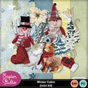 Silke_winter_cabin_pv_small