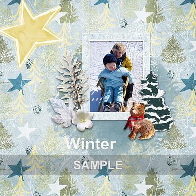 Winter_cabin_layout_pv