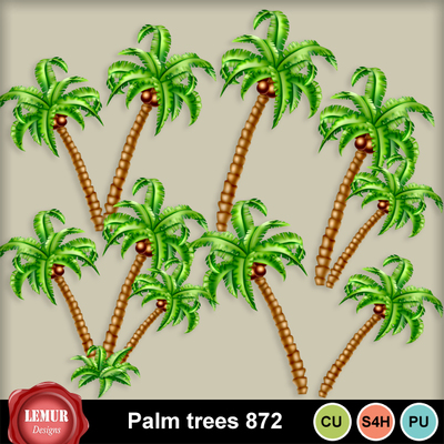 Palm_trees_872