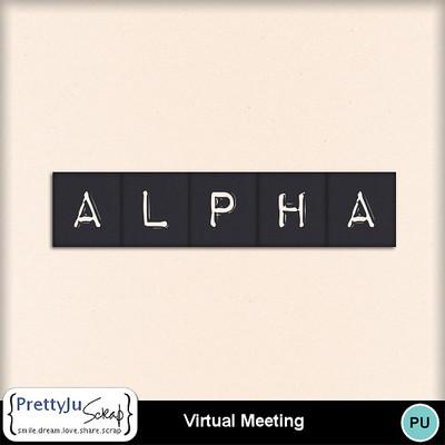 Virtual_meeting4