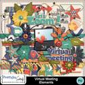 Virtual_meeting_el_small