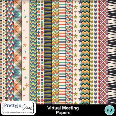 Wirtual_meeting_pp