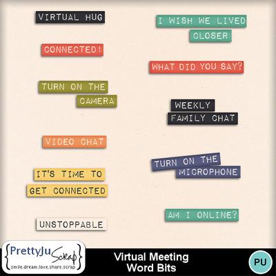 Virtual_meeting_wb
