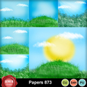 Papers_873_small