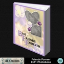 Friends_forever_8x11_photobook-001a_small
