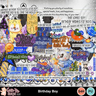 Birthdayboy10