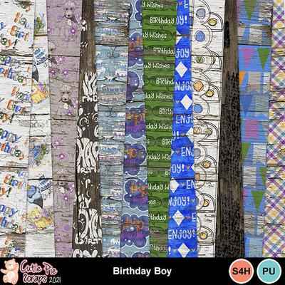 Birthdayboy11