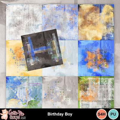 Birthdayboy12