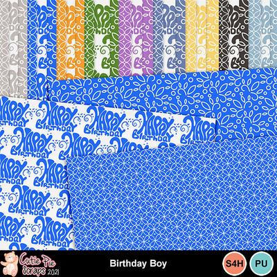 Birthdayboy13