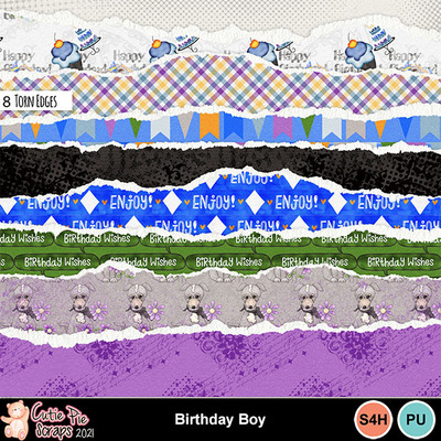 Birthdayboy16