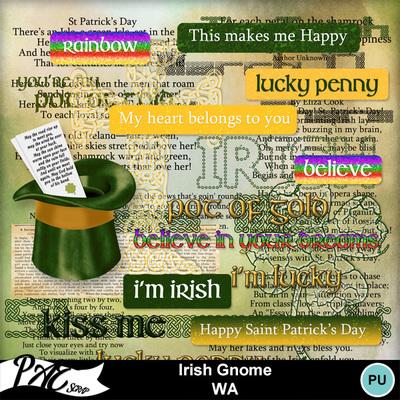 Patsscrap_irish_gnome_pv_wa