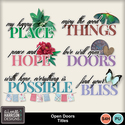 Aimeeh_opendoors_ti_small
