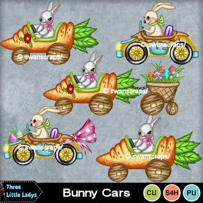 Bunny_cars-tll