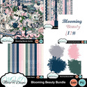 Blooming_beauty_bundle_01_small