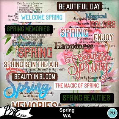 Patsscrap_spring_pv_wa