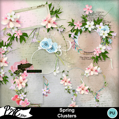 Patsscrap_spring_pv_clusters