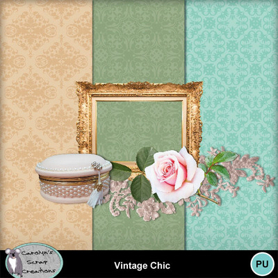 Csc_vintage_chic_wi