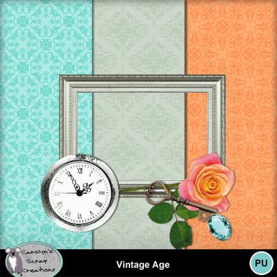 Csc_vintage_age