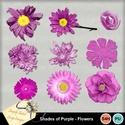 Purple_flowers_small