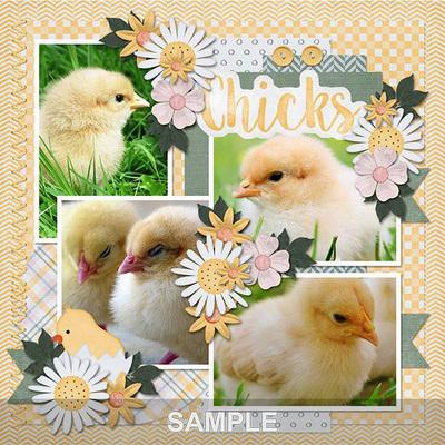Chicks_joycemm