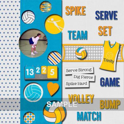 Volleyball_lindamm