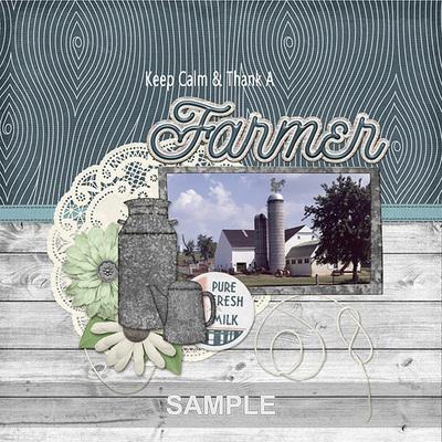 Farmhouse_joyce2mm